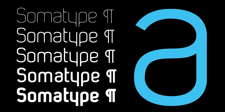 Somatype1440px-1