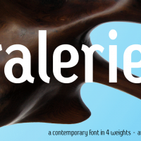 Galerie2-Banner-33a