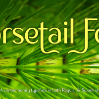 Horsetail Fern